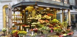 Çiçekçi Dükkanı Açmak   Çiçekçi Açma Maliyeti ve Kazancı