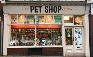 Petshop Açmak | Petshop Açma Maliyeti ve Kazancı 2021